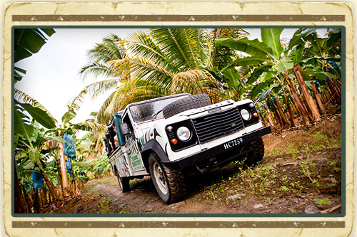 Soufriere Jeep Discovery & Waterfall Revelation